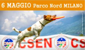 CascinAperta,Giochi acrobatici e DISC DOG