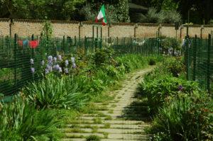 Gli orti sociali del Parco si aprono ai giovani e alle famiglie