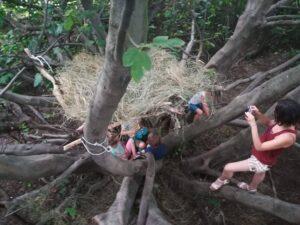 """Pedagogia del bosco con il centro estivo """"In movimento"""""""